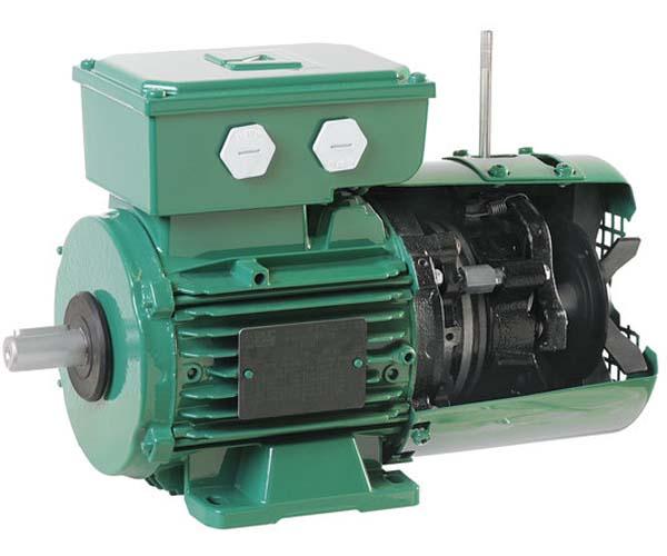 Electromotor AC FFB