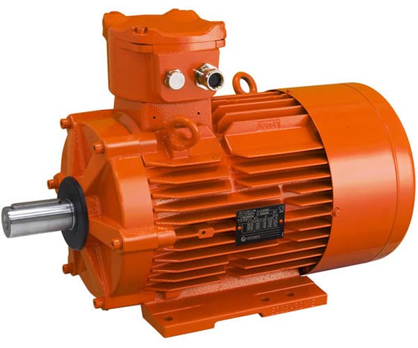 Electromotor AC FLSD
