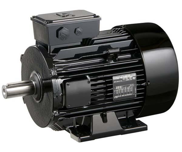 Electromotor AC LSMV