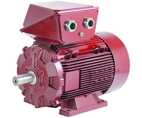 Electromotor AC LSRPM Dyneo
