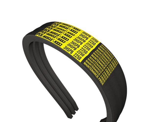 Banded Belts2